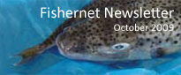 Fishernet_newsletter-1